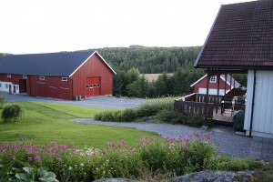 26 år siden NM fra Rustad gård